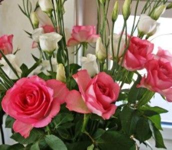 Цветятя в офиса са полезни